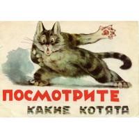 Георгий Николаевич КАРЛОВ<br />&laquo;Посмотрите, какие котята&raquo;, 1965